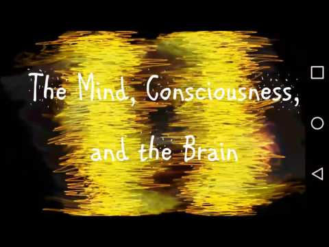 The Mind, Consciousness, and the Brain