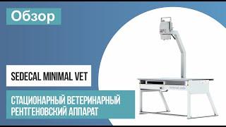 Обзор ветеринарного рентген аппарата Sedecal Minimal Vet (Испания) | ТЕХНО-МЕД