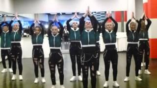 Презентация танцевальной школы PROТАНЦЫ (17.12.2015)