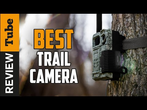 ✅Trail Camera: Best Trail Camera 2019 (Buying Guide)