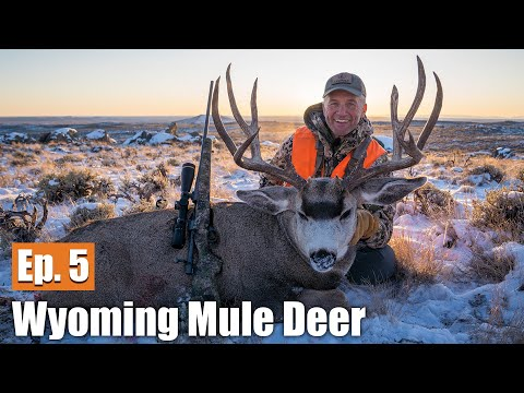 My Biggest Buck Yet | 2019 Wyoming Mule Deer (Ep. 5)
