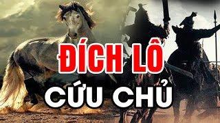 Sự Thật Về Ngựa ĐÍCH LÔ Nổi Tiếng Nhất TAM QUỐC – Cứu LƯU BỊ Và Nỗi Oan Sát Chủ