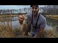 MONSTER PB GREEN SUNFISH!!! Winter Pond Bass Fishing (COLD & MUDDY!)