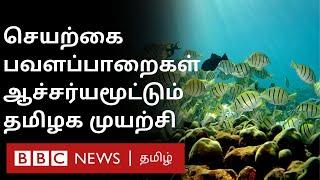 செயற்கை பவளப்பாறை: தமிழகத்தின் முன்னோடி திட்டம் | artificial coral reef