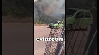 Εύβοια: Μεγάλη φωτιά στο Κοντοδεσπότι - Μια «ανάσα» από τα σπίτια οι φλόγες! (2)
