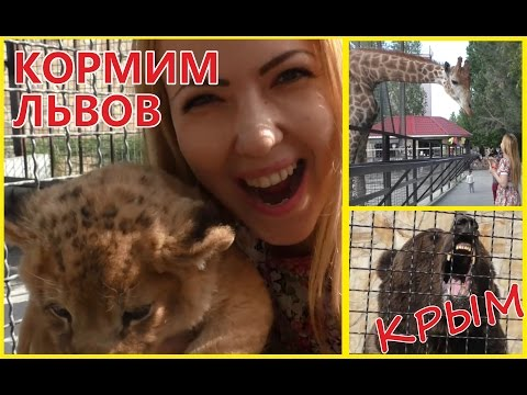 Тайган: Парк Львов