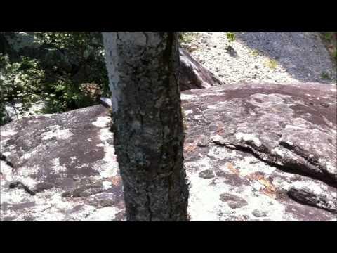 Hiking the Green Saluda NC