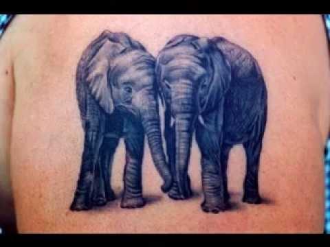 Imagenes De Tatuajes Elefantes Youtube