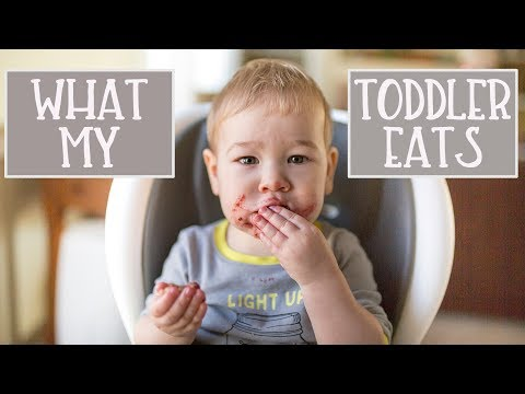 What My Toddler Eats In A Day | Dairy Free