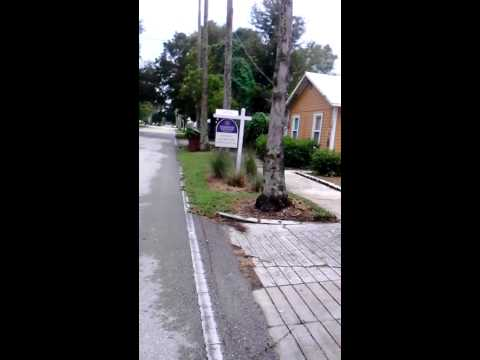 All Native - Florida Landscaping