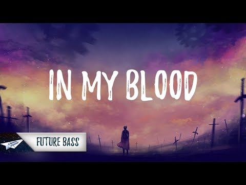 Shawn Mendes - In My Blood (Lyrics / Lyric Video) ZESK Remix