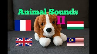Animal Sounds in Different Languages (Part 2)