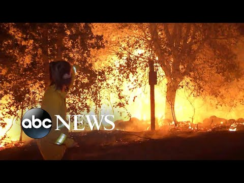 2 new wildfires out West scorch nearly 10,000 acres overnight