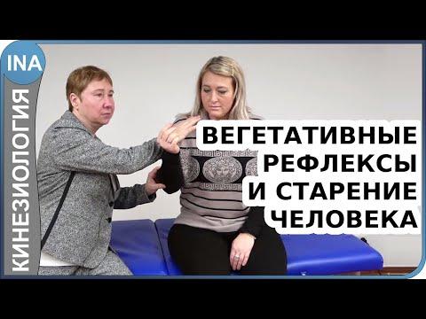 Вегетативные рефлексы и старение человека. Прикладная кинезиология. Людмила Васильева
