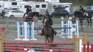 Won't Do It No More - Horse Bloopers 2011