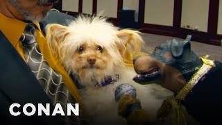 Triumph The Insult Comic Dog Hits The Golden Collar Awards - CONAN on TBS
