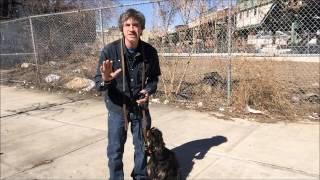 Dog Heel off leash Basics, Use potty command for dog to know heel