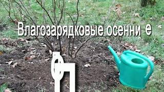 Влагозарядковые осенние поливы