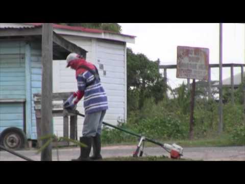 Guyana, Weeding the Road Side. (HD)