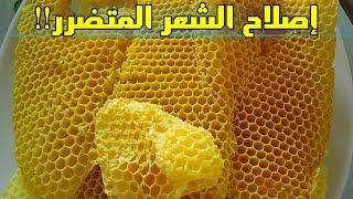 فوائد شمع العسل للشعر، إصلاح داخلي للشعر المتساقط بسبب التغذية!!