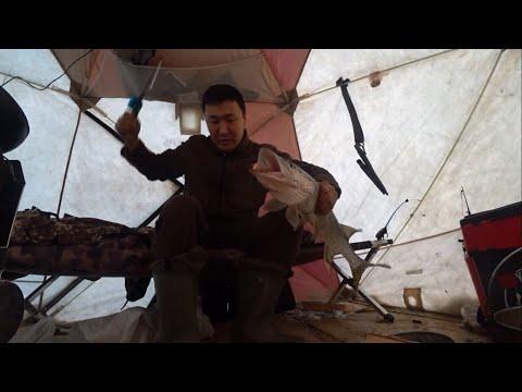 Клев, когда ты остаёшся в палатке один! Так бы всегда!