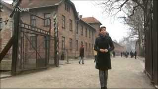 Osvobození koncentračního tábora v Osvětimi - Střepiny speciál (25.1.2015)