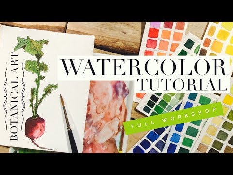 How to use Watercolors full workshop: Botanical Art Illustration