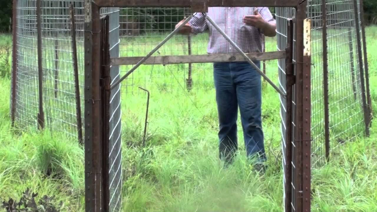 R Fisheries Trapping Feral Hogs: N...