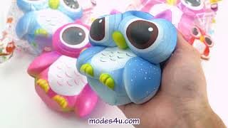 Cute owl squishy