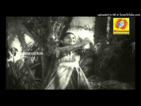 Koottililam Kili kunjatta kili koodum vedinjittu pokalle.....(Preetha Madhu)