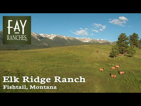 Montana Mountain Property For Sale | Elk Ridge Ranch | Fishtail, MT