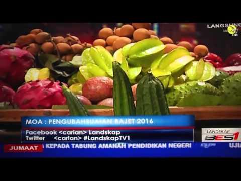 Rakaman Landskap TV1 RTM Bersama YBM Pertanian Dan Industri Asas Tani