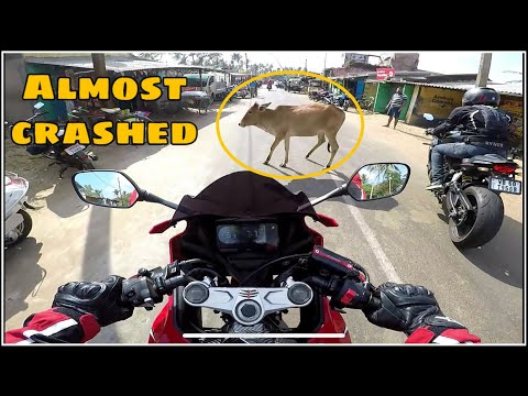 Superbikers Almost CRASHED | Cow In The Middle Of The Road