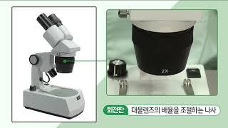 5 3  실체현미경의 구조와 사용법