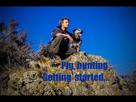 Pig Hunting/Getting Started