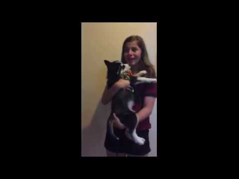 Mom Surprises Daughter With Husky Puppy