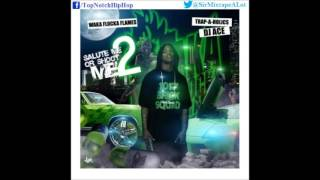 Waka Flocka - What You Reppin (Feat. 1017 Brick Squad) [Salute Me Or Shoot Me 2]