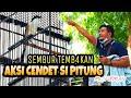 Aksi Cendet Si Pitung Asli Dari Madura Anniv Mustika Logam  Feat Mahadewa Sultan Akbar  Mp3 - Mp4 Download