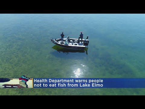 State Department Of Health: Don't Eat Fish From Lake Elmo