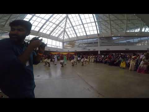MAM Flash Mob -Memphis India Fest 2017