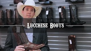 New Lucchese Boot Store