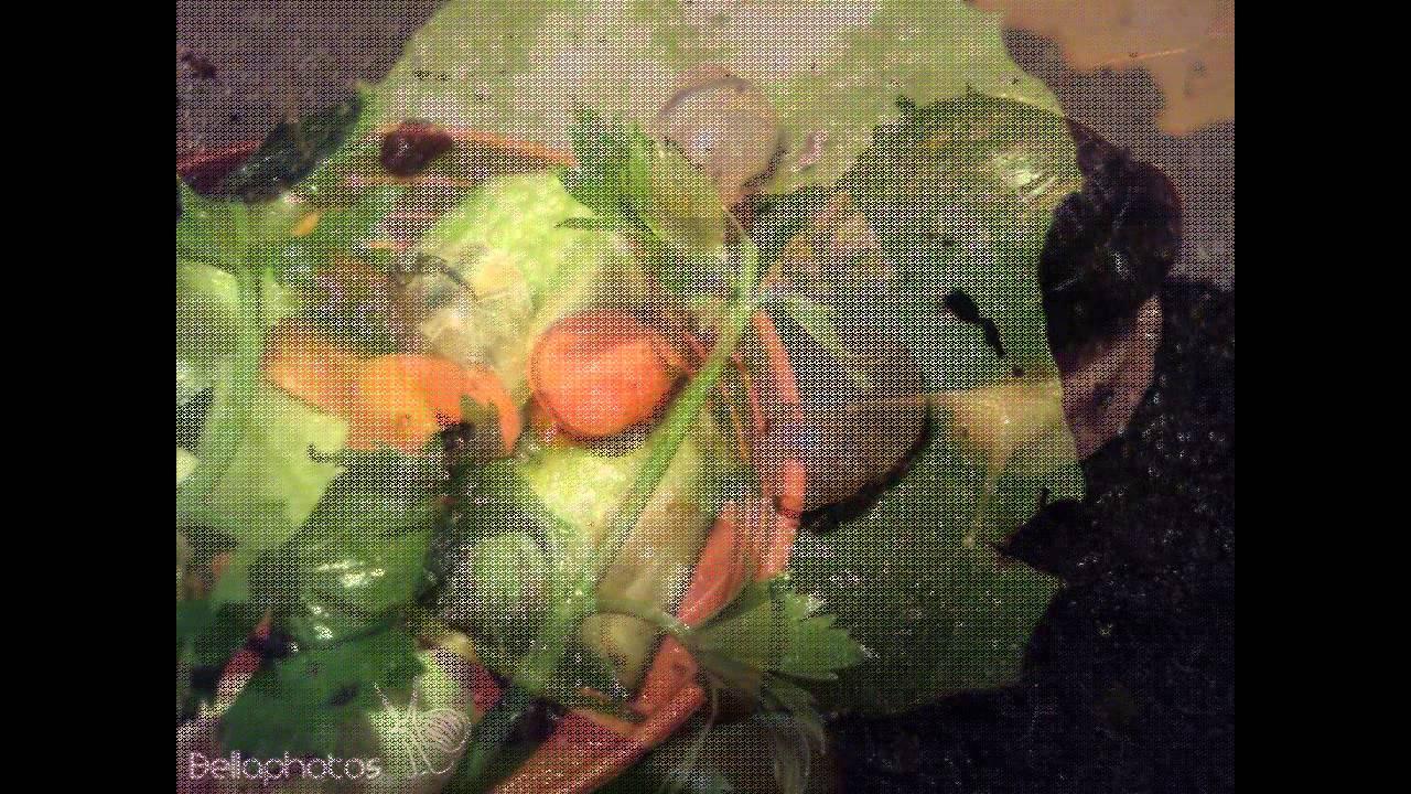Papilloma paraziták kezelése, Paraziták a szervezetünkben: mikor gyanakodjunk?