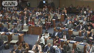 日本の核廃絶決議案を採択も 賛成が12カ国減(19/11/02)