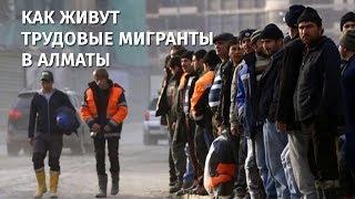 В погоне за деньгами: как живут трудовые мигранты в Алматы