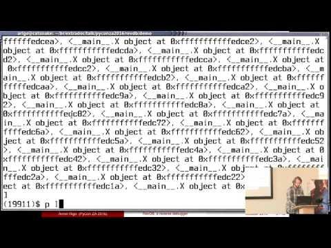 Image from RevDB, a reverse debugger