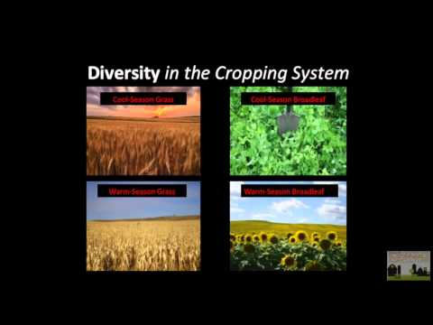 Gabe Brown in Idaho 2: Keys To Building a Healthy Soil