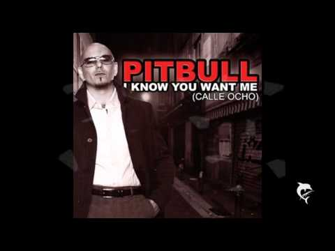 Pitbull - I Know You Want Me + DOWNLOAD MP3