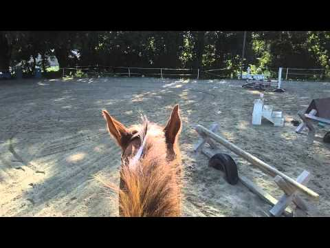 Riding Lesson at Hidden Brook Farm, August 3, 2015