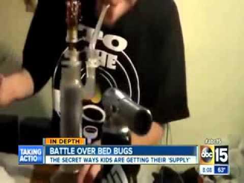 kids smoking bed bugs to get high youtube