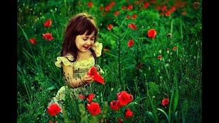 WhatsApp status Aise Gulshan to Baharo me Khila karte hai